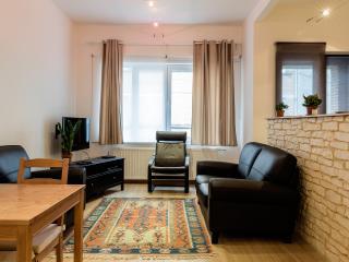 Montagne - 3601 - Brussels - Brussels vacation rentals