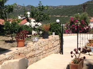 BRAND NEW APT on ANCIENT LYCIAN WAY - Kas vacation rentals