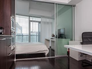 Stylish 1BR with Amazing DT Views - Toronto vacation rentals