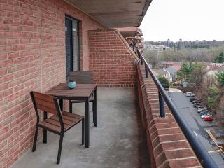 Charming & Cozy Studio with Balcony - District of Columbia vacation rentals