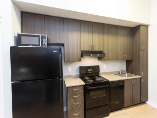 Modern Queen St West Highrise - Toronto vacation rentals