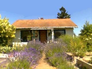 Eagle Heights Cottage on Vashon Island - University Place vacation rentals