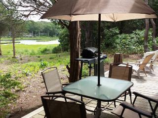 WATER VIEW Tuck-Away Near Town Walk to Beach - Oak Bluffs vacation rentals