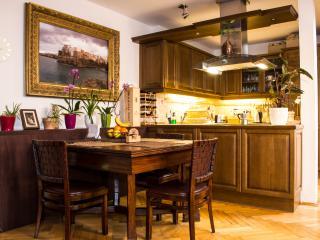 Luxury Penthouse City Center - Bohemia vacation rentals