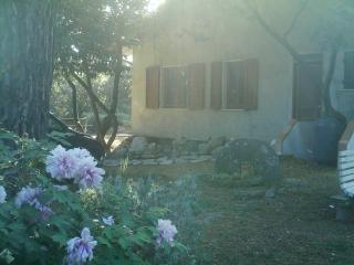 camera in casa unifamiliare - Sarzana vacation rentals