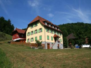 Vacation Apartment in Schuttertal - 323 sqft, 1 living room / bedroom, max. 2 people (# 6067) - Schuttertal vacation rentals