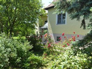 Vacation Home in Deutschkreutz - 1292 sqft, central, sunny, charming (# 4782) - Penzing vacation rentals