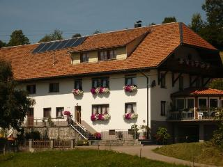 Vacation Apartment in Dachsberg - 753 sqft, max. 4 people (# 6167) - Titisee-Neustadt vacation rentals