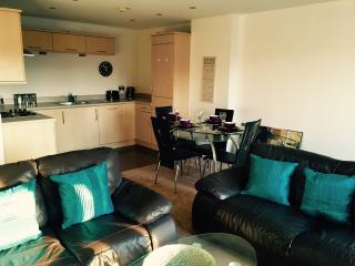 Stunning City Centre Apartment - Newcastle upon Tyne vacation rentals