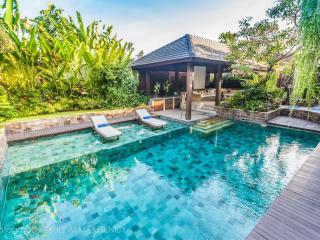 Besok, 3 Bed/3 Bath Luxury Villa, Seminyak - Seminyak vacation rentals