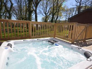 29279 - Devon vacation rentals