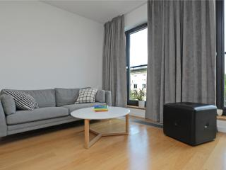 Lux Apartments Centrum Warsaw 4 PEOPLE - Warsaw vacation rentals