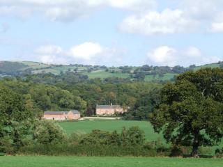 Bach y Graig Farmhouse - Denbigh vacation rentals