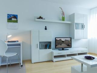 Apartment Mika Tour As in the city center - Ljubljana vacation rentals