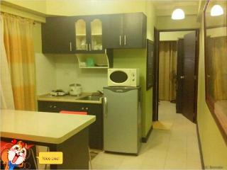 Condotel For Rent near Airpprt - National Capital Region vacation rentals