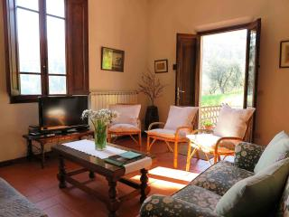 Cantina for 6 in Tuscan hills - Casalguidi vacation rentals