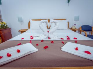Hotel Pharos - Double Room 1 - Bar vacation rentals
