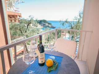 Studios Mona- Studio with Balcony and Sea View 1 - Sveti Stefan vacation rentals