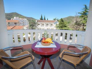 Apartments Dimić Ellite - Double Room with Balcony 6 - Montenegro vacation rentals