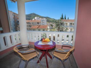Apartments Dimić Ellite - Triple Studio with Balcony 1 - Budva vacation rentals