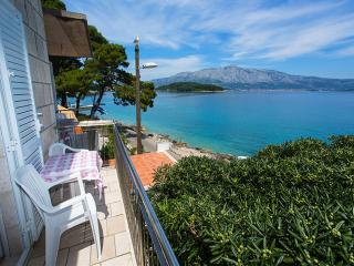 Apartments Nikolina-One-Bedroom Apartment with Balcony - Southern Dalmatia Islands vacation rentals