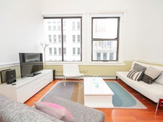 Tribeca 4-bed room massive apt - New York City vacation rentals