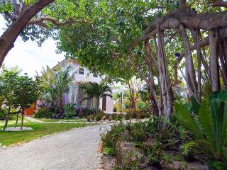 Banyan Tree - Harbour Island vacation rentals
