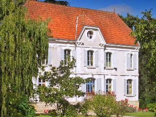 Chateau De La Cheine - Bergerac vacation rentals