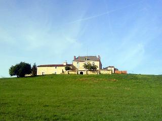 Manoir Beaulieu - Villefranche-de-Lonchat vacation rentals