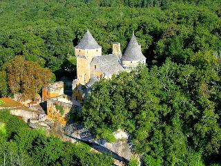 Chateau De Lauzel - Ajat vacation rentals