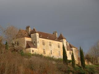 Chateau Rochette - Mouleydier vacation rentals