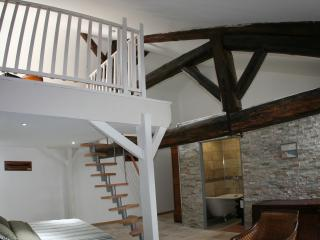 domaine des augustins Olivier et Muriel FURY - Montagnac vacation rentals