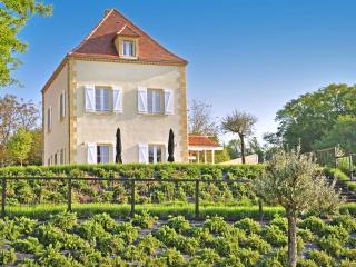 Chateau les Oiseaux - Saint-Agne vacation rentals