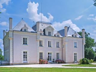 Chateau Anais - La Haye Fouassiere vacation rentals