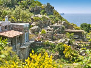 Villa Polidori - Forio vacation rentals