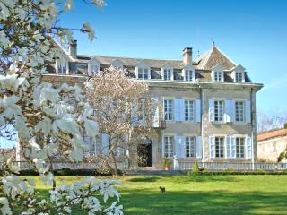Chateau Glycines - Encausse-les-Thermes vacation rentals