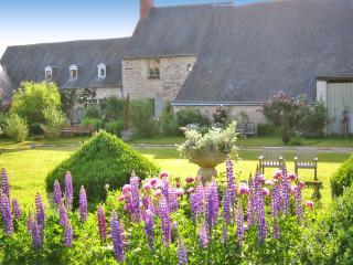 Maison Pierre-Louis - Varennes sur Loire vacation rentals