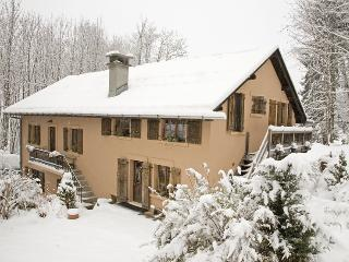 Le Forgeron - Servoz vacation rentals