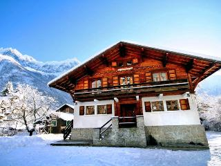 Chalet Poudreuse - Rhone-Alpes vacation rentals