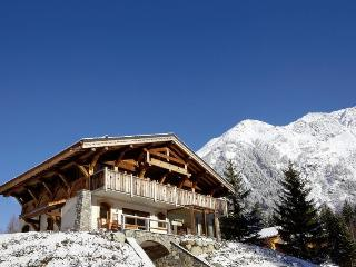 The Mountain Bear - Argentiere vacation rentals