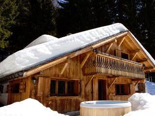 Mountain Chalet - Haute-Savoie vacation rentals
