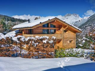 Chalet La Dune - Chamonix vacation rentals