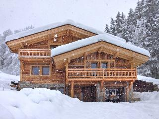 Black Diamond Lodge - Mont Saxonnex vacation rentals
