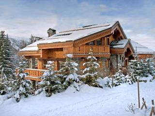 Chalet Trois Marmottes - Meribel vacation rentals