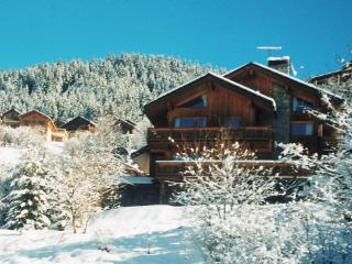 Chalet Bonbon - Saint-Alban-des-Hurtieres vacation rentals