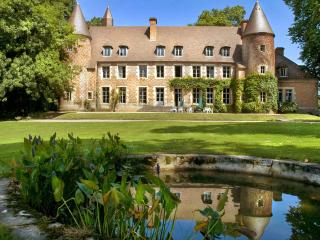 Chateau Du Marquis De Tracy - Paray-Le-Fresil vacation rentals