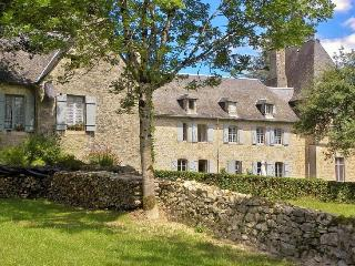 Chateau Beauford - Saint-Martin-la-Meanne vacation rentals