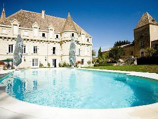 Chateau Castelsagrat - Castelsagrat vacation rentals