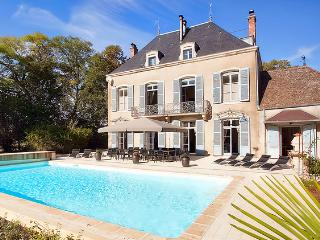 Chateau De Lanse - Tournus vacation rentals