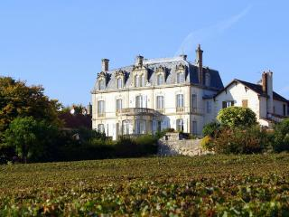 Chateau De Mercury - Tournus vacation rentals
